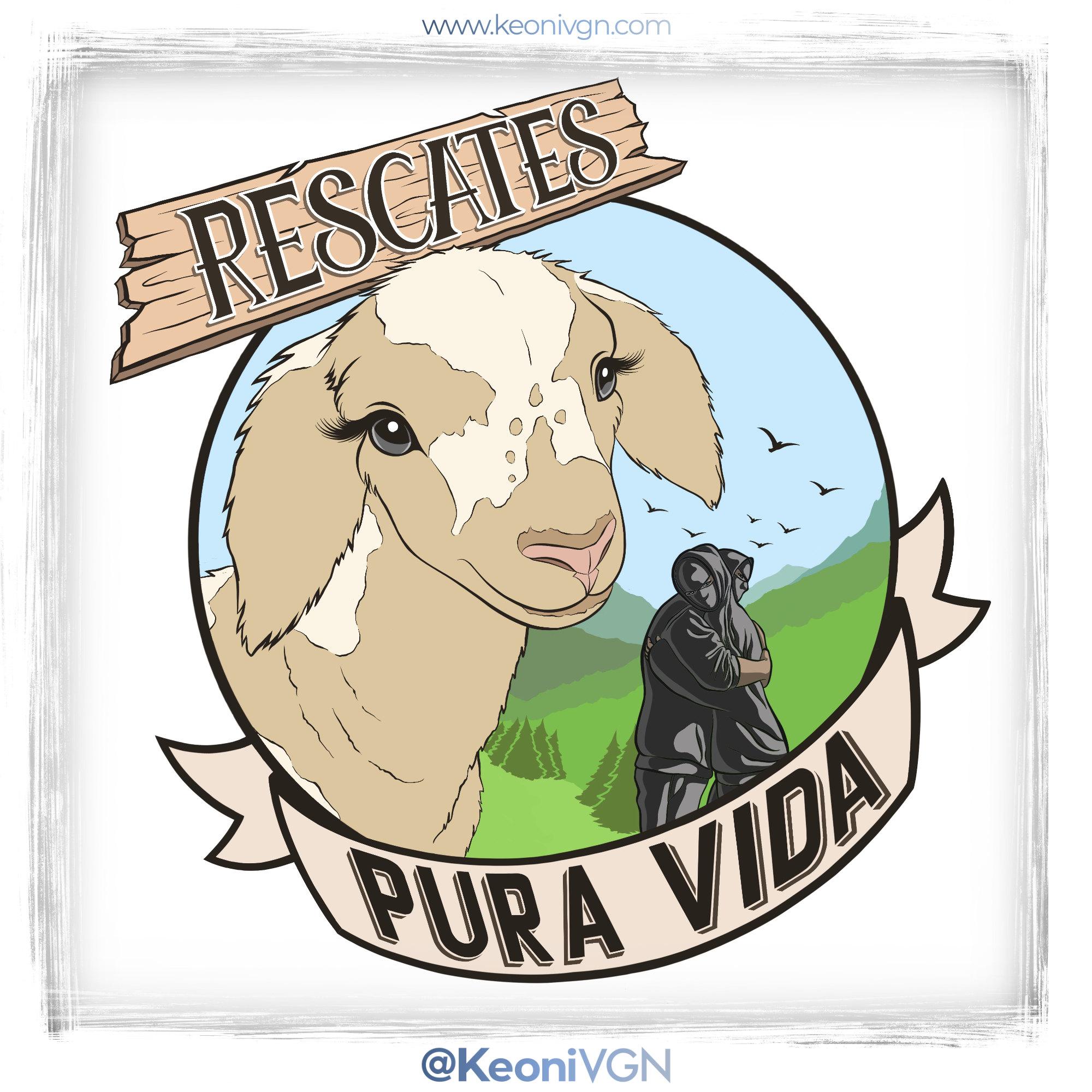 proyecto PURA VIDA